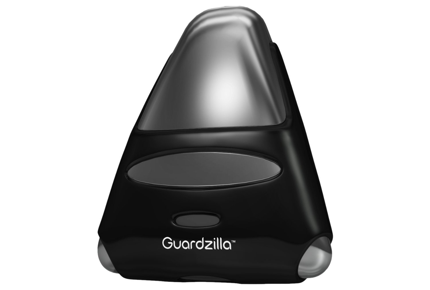 Guardzilla Nanny Cams